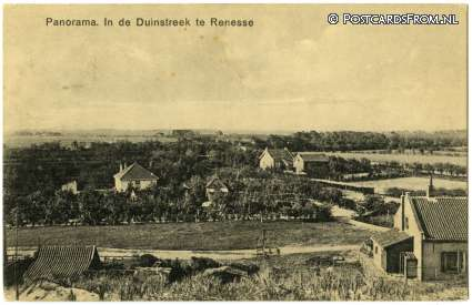 ansichtkaart: Renesse, Panorama. In de Duinstreek